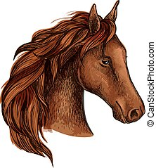 Brown stallion horse head sketch of purebred racehorse with...