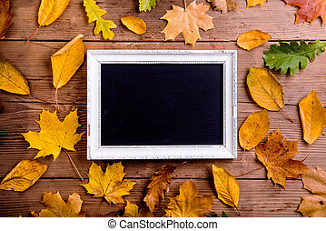 Autumn leaf composition with picture frame. Copy space. -...