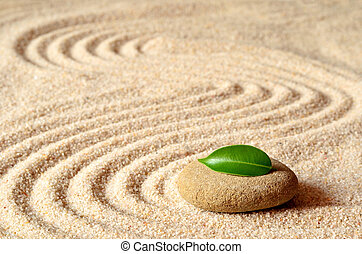 stones and green leaf on the sand with circles