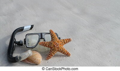 Mask Shells Wash Away - Dive mask, starfish and a shell lay...