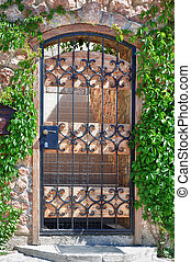 Iron gate in leaves - Iron gate of european house in leaves