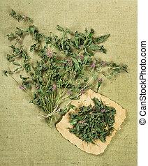 Mint, spearmint, peppermintDried herbs Herbal medicine,...