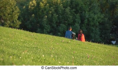 Unrecognizable couple in blue and red clothes having picnic...