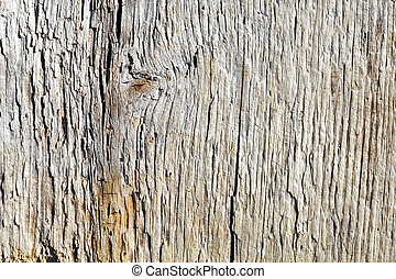 Surface of rotten wooden board close up - Rough surface of a...