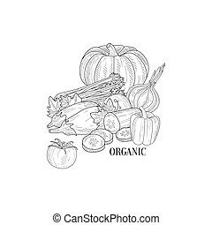 Organic Vegetables Still Life Hand Drawn Realistic Sketch