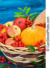 Autumnal still life with pumpkins, apples and rowanberry