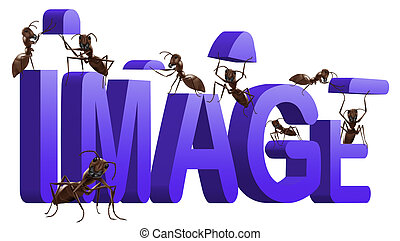 ant image personality building