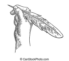 Female hand holding a goose feather. Vector black vintage engraving