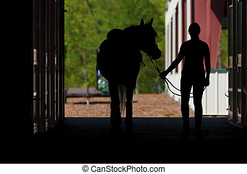 Horse and Rider - Silhouetted photograph of a horse and...