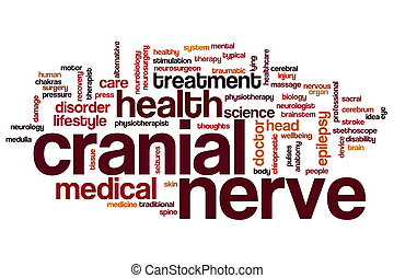 Cranial nerve word cloud concept