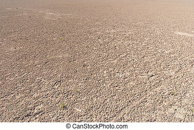 Dried salt lake shore - Dried salt lake Kuyalnik shore ,...