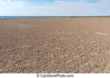 Dried salt lake shore on blue sky background