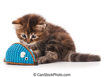 Cute fluffy kitten caught toy mouse isolated on white...