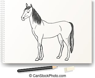 Horse drawn by hand in pencil on the album A4 - Vector...