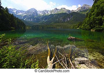 tovel lake, italian alps - nice view of tovel lake on...