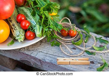 vegetables and greens in a garden - harvest of vegetables...