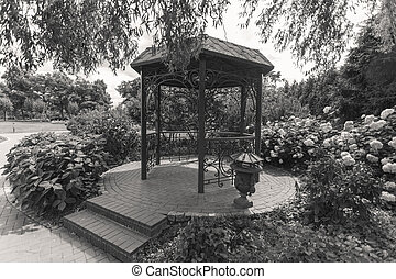 Black and white image of old metal alcove under tree at park...