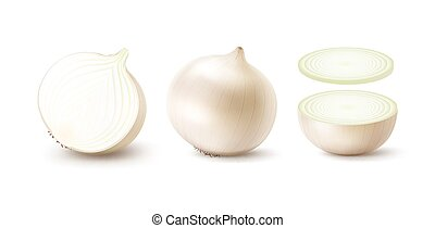 Set of Fresh Whole and Sliced White Onion Bulbs - Vector Set...