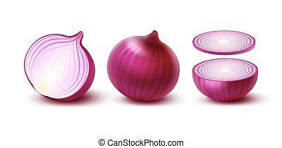 Set of Fresh Whole and Sliced Red Onion Bulbs - Vector Set...