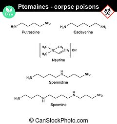 Ptomaines chemical formulas - Ptomaines structures -...