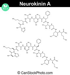 Neurokinin A chemical structure - Neurokinin A molecular...