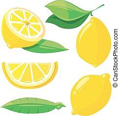 Fresh lemons with leaves, lemon slice isolated on white