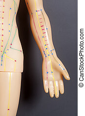 Medical acupuncture model of human hand on black background