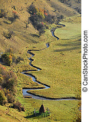 Meandering small watercourse in a green meadow