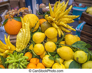 Mix of citrus fruits - Pile of different citrus fruits, from...