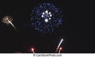 loop of nice firework - loop of nice, colorful firework at...