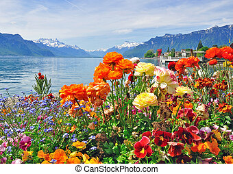 Colourful flowers with Geneva lake on background