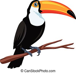 Toucan Bird Vector Illustration - Toucan Bird Mascot Vector...