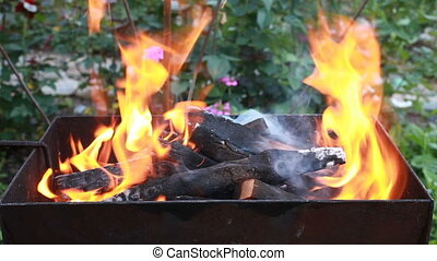Burning wood in a brazier. Fire, flames. Grill or barbecue -...