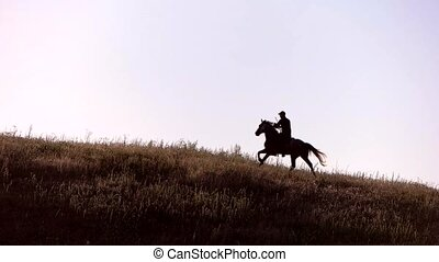 Horseman moving in slow motion. Horse rider on the hill....