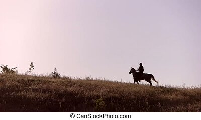 Horse rider moving in slo-mo. Horseman on sky background....