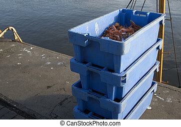 Prawns in blue containers