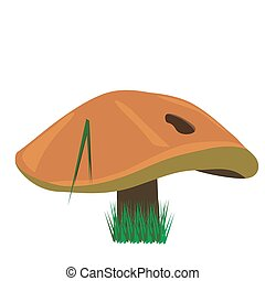 Print - vector illustration of Suillus luteus, also known as...
