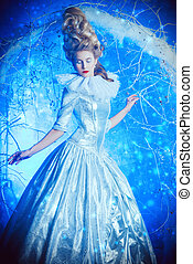 Ice Queen portrait - Fairy Ice Queen in elegant silver and...