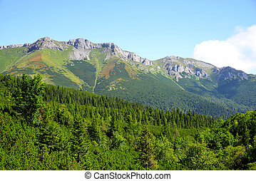 View of the Belianske Tatry Mountains, Slovakia