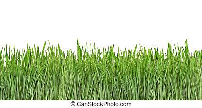 Grass Blades Cutout