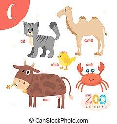lindo,  Abc, animales,  C, divertido, animales, libro, carta, caricatura,  vector