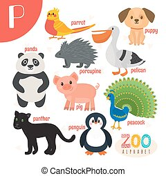 lindo,  Abc, animales, carta, divertido, animales, libro,  vector,  P, caricatura