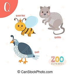 Letter Q. Cute animals. Funny cartoon animals in vector. ABC...