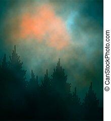 Dark sunset forest