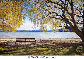 beautiful scenic of lake wanaka new zealand important...