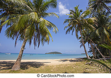 Beautiful tropical beach at island Koh Chang , Thailand