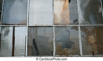 glass window abandoned warehouse factory broken video -...