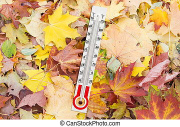 Thermometer for measurement of air temperature on the fallen...