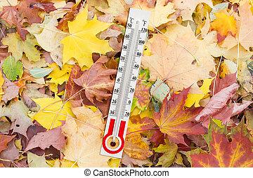 termómetro, para, medida, de, Aire, temperatura, en,...