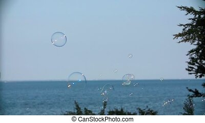 Soap Bubbles Floating Around Sea Landscape.